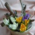 pavasarines_nertos_geles_1