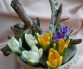 pavasarines_nertos_geles_01